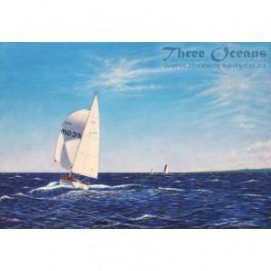 Vasco Da Gama Ocean Race