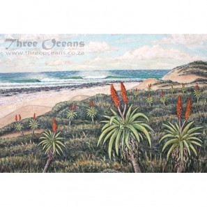 Aloes Two
