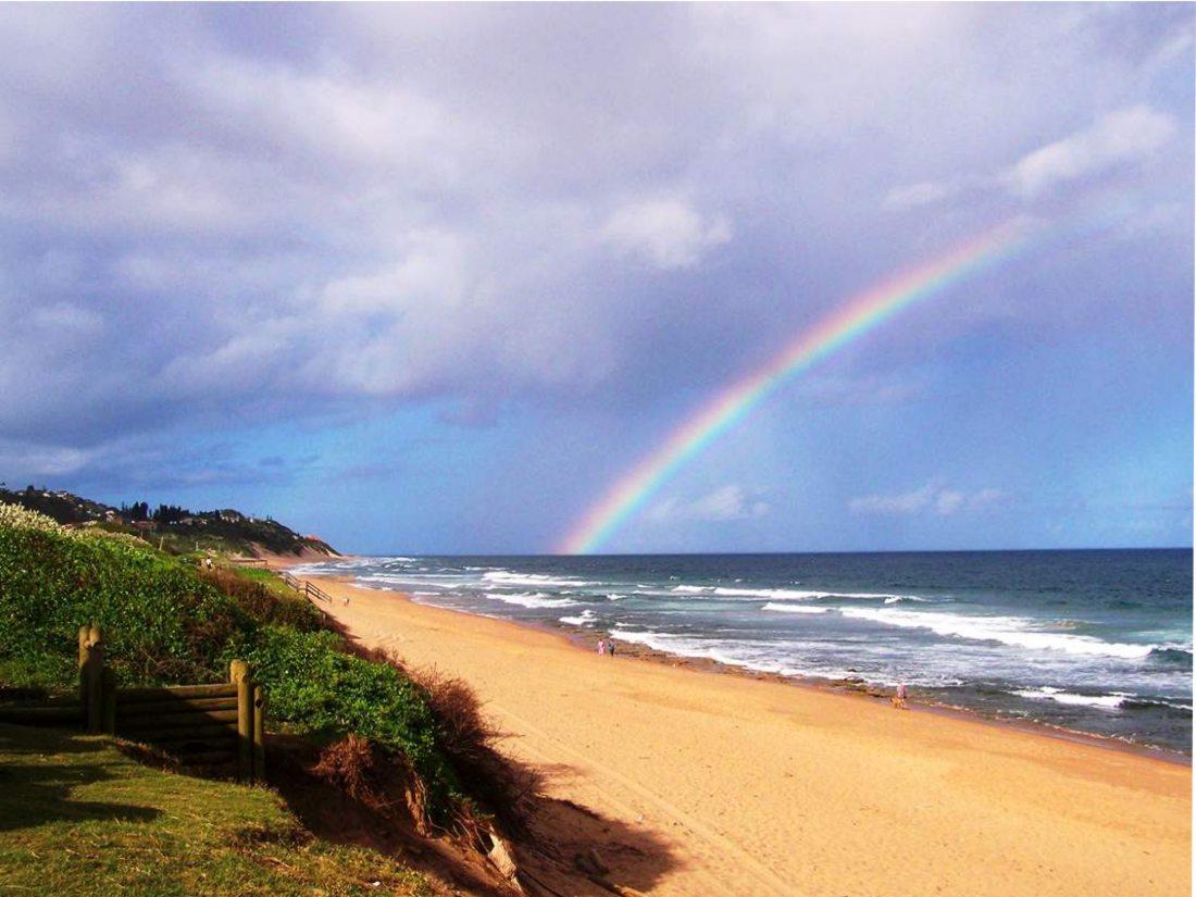 m_Ansteys Rainbow  - Copy